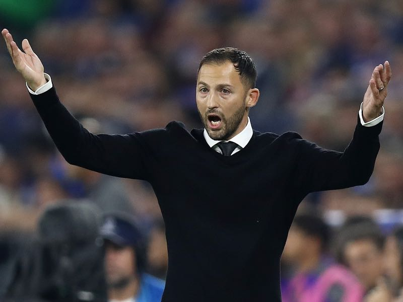 Schalke v Porto - Domenico Tedesco, Manager of FC Schalke 04 reacts during the Group D match of the UEFA Champions League between FC Schalke 04 and FC Porto at Veltins-Arena on September 18, 2018 in Gelsenkirchen, Germany. (Photo by Maja Hitij/Bongarts/Getty Images)